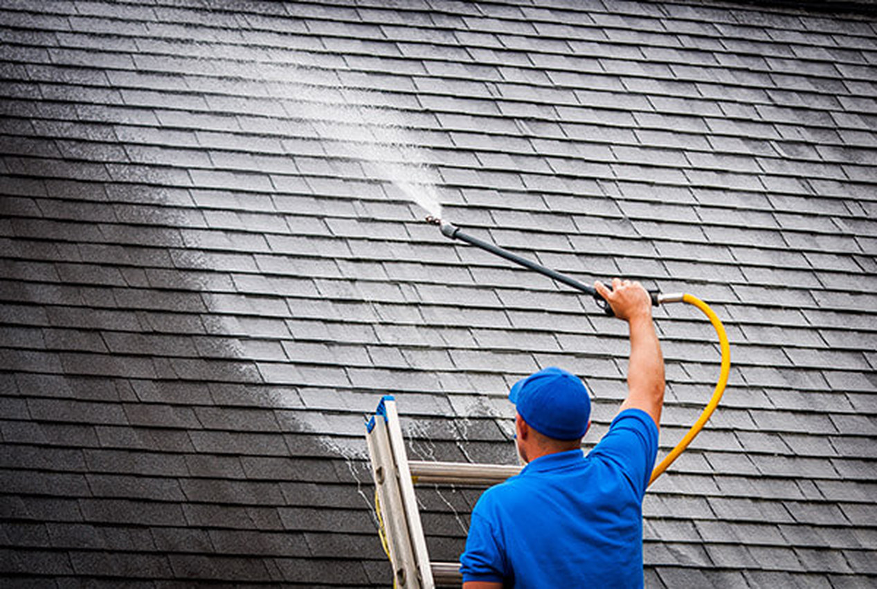 Importance Services of Roof Cleaning